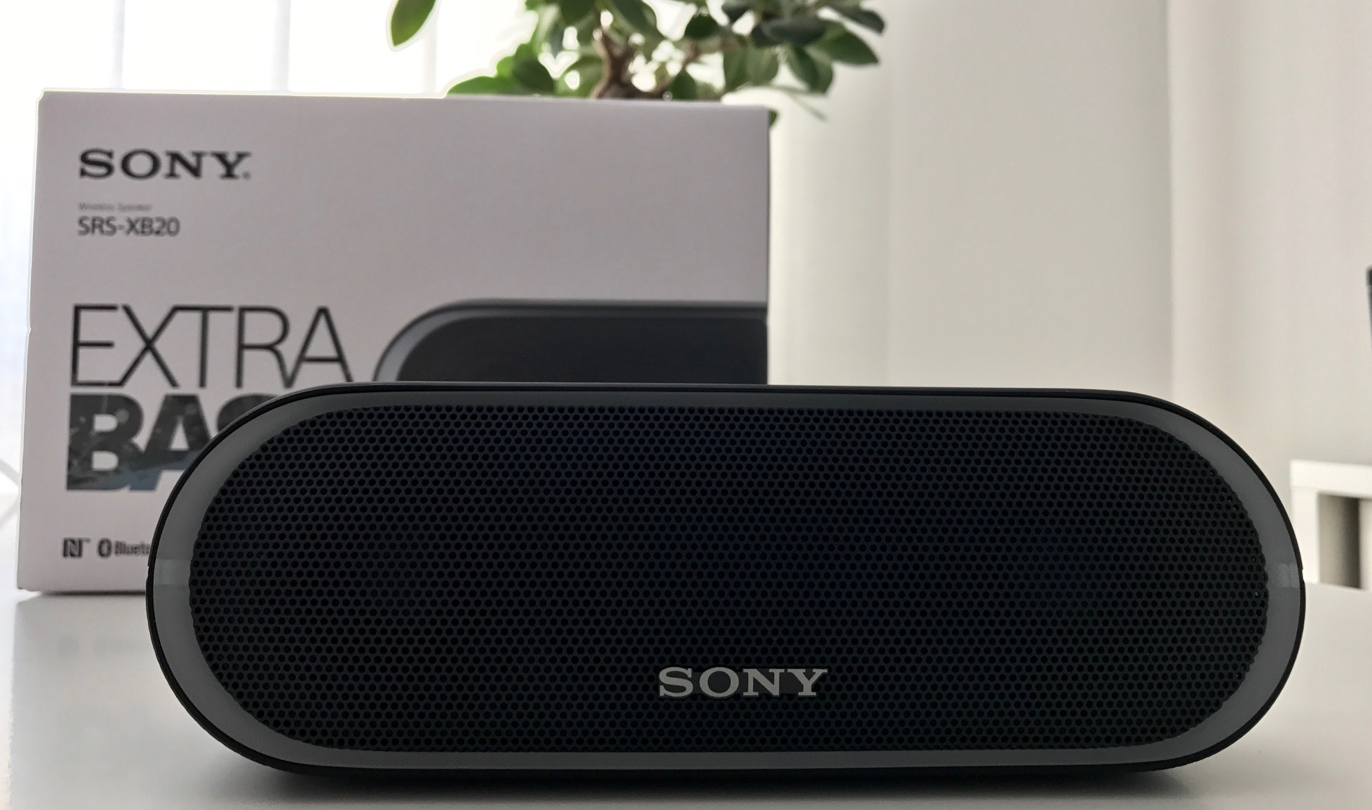 Sony SRS XB20 Test